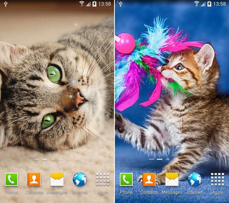 Скачать обои на андроид с животными