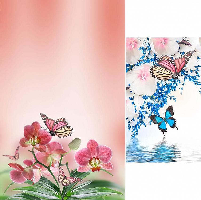 Живые Обои Бабочки Движутся